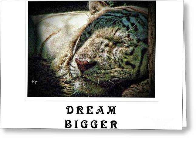 Greeting Card featuring the photograph Dream Bigger by Traci Cottingham