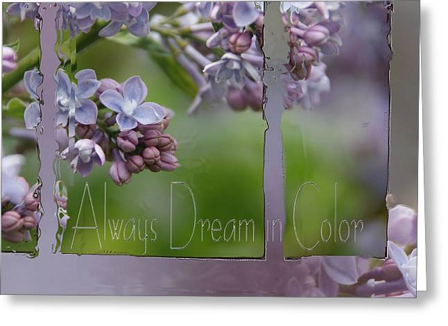 Inspriation Greeting Cards - Dream in Color Greeting Card by Tingy Wende