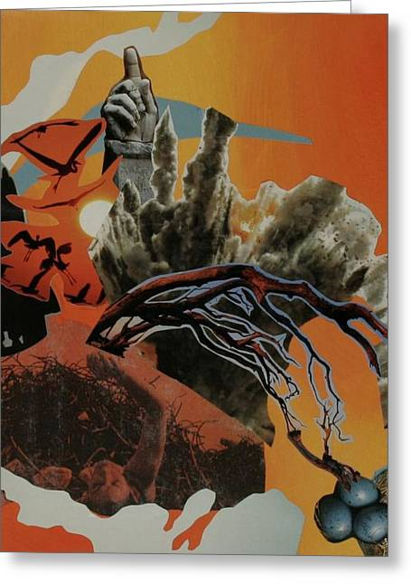 Dream In Tangerine Greeting Card