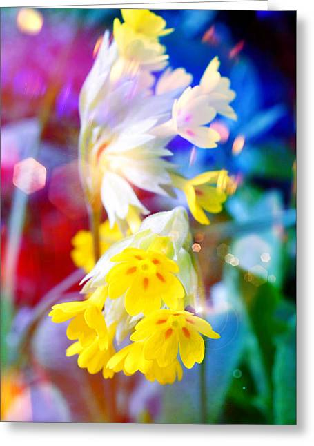 Dream Of Yellow Flowers Greeting Card by Mikko Tyllinen