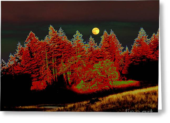 Dreaming Tree Moon Greeting Card by JoAnn SkyWatcher