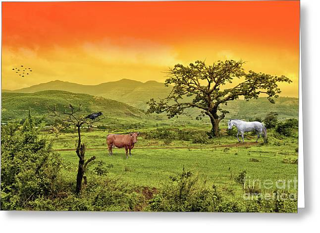 Greeting Card featuring the photograph Dreamland by Charuhas Images