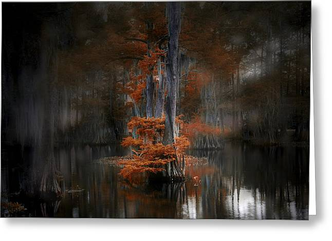 Dreamy Autumn Greeting Card by Cecil Fuselier