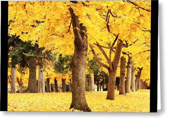 Dreamy Autumn Gold Greeting Card by Carol Groenen