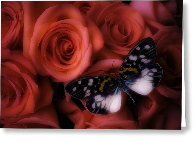 Dreamy Butterfly Greeting Card by Garry Gay