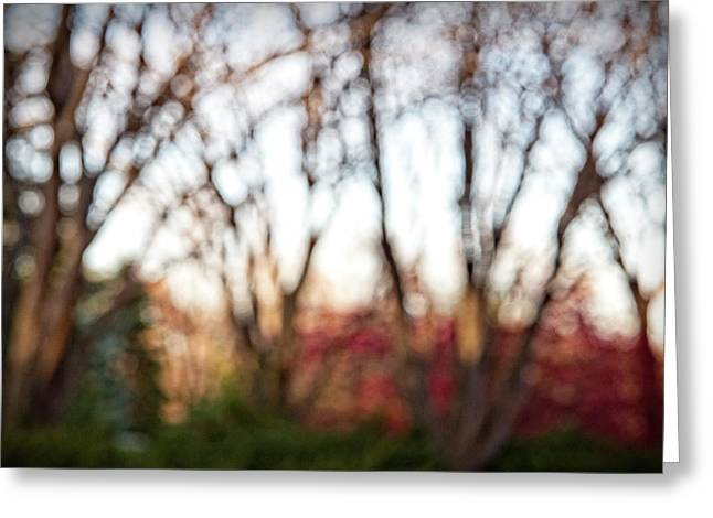 Greeting Card featuring the photograph Dreamy Fall Colors by Susan Stone