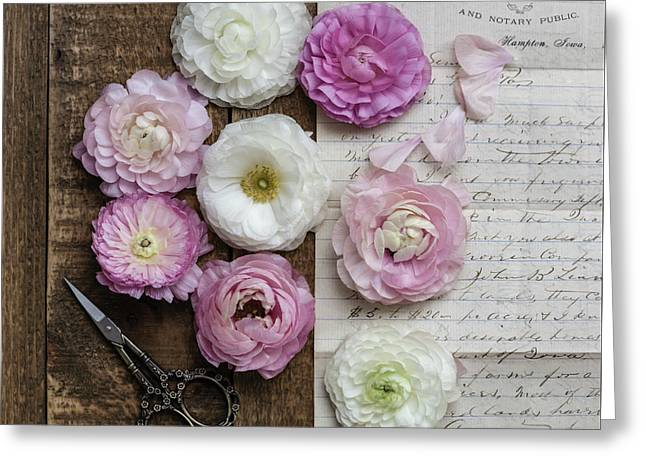Greeting Card featuring the photograph Dreamy Ranunculus  by Kim Hojnacki