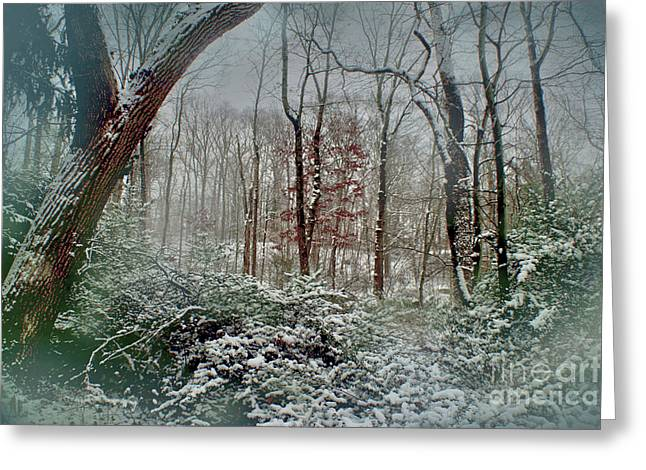 Greeting Card featuring the photograph Dreamy Snow by Sandy Moulder
