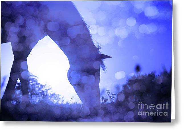Dreamy Sunrise In Blue Greeting Card