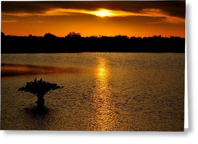 Dreamy Sunset Greeting Card by Jennifer A Garcia