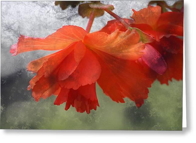 Dreamy Tangerine Greeting Card by Julie Lueders