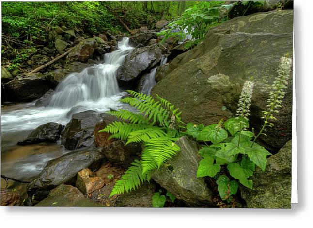 Greeting Card featuring the photograph Dreamy Waterfall Cascades by Debra and Dave Vanderlaan