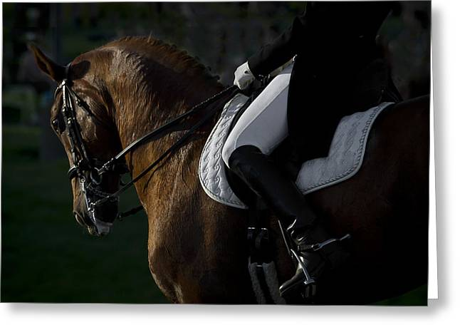 Greeting Card featuring the photograph Dressage D5284 by Wes and Dotty Weber