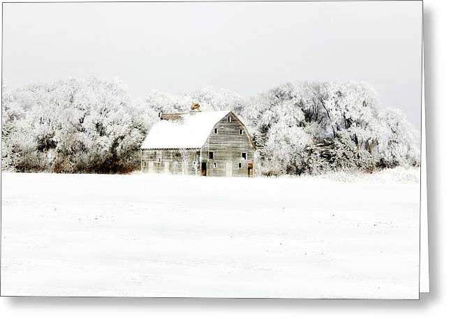 Dressed In White Greeting Card