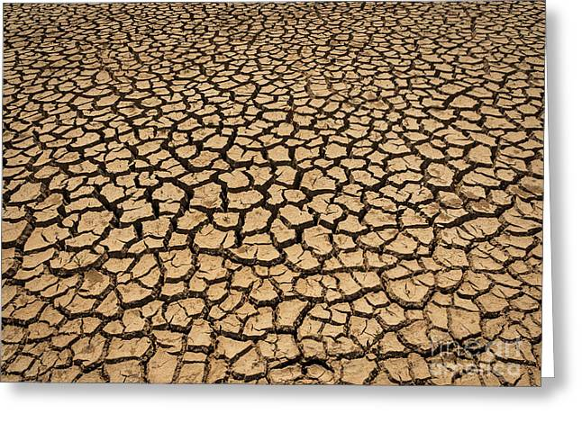 Dried And Cracked Soil In Arid Season. Greeting Card