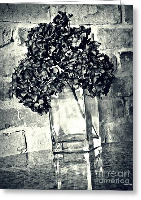 Dried Hydrangea 4 Greeting Card