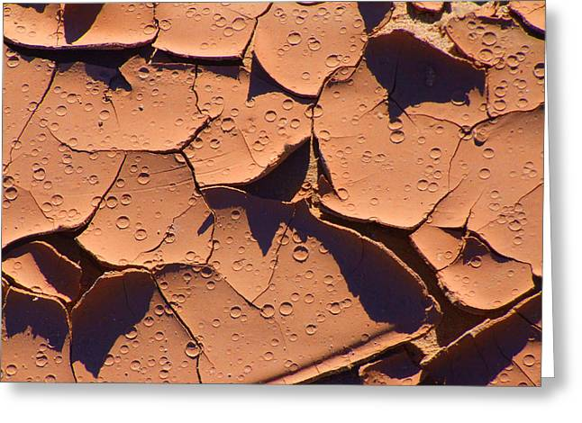 Dried Mud 3c Greeting Card by Mike McGlothlen