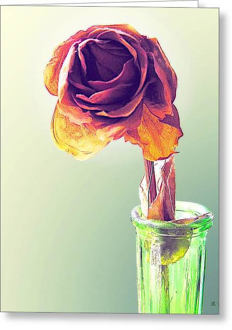 Dried Rose Greeting Card by Brian Wallace