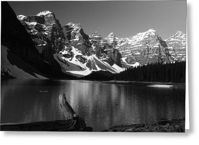 Drift Wod On Lake Moraine Greeting Card