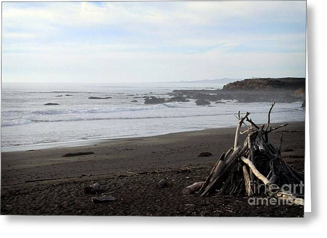 Beach Cottage Greeting Cards - Driftwood and Moonstone Beach Greeting Card by Linda Woods