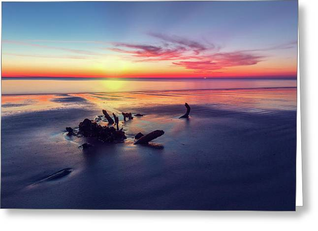 Driftwood At Dawn Greeting Card