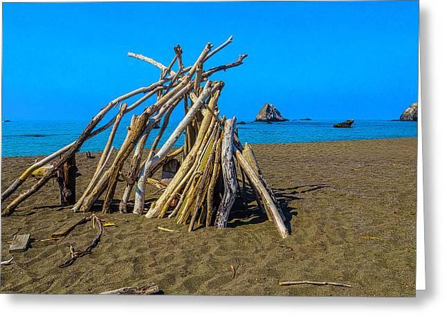 Driftwood Beach Art Greeting Card