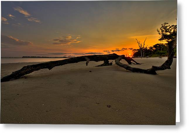 Driftwood Beach Hdr 1 Greeting Card by Jason Blalock