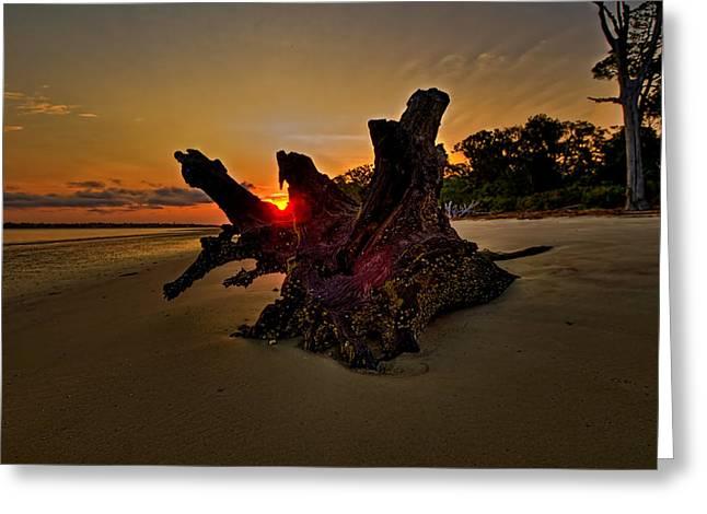 Driftwood Beach Hdr 2 Greeting Card by Jason Blalock