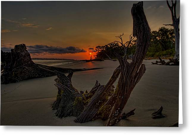 Driftwood Beach Hdr 3 Greeting Card by Jason Blalock
