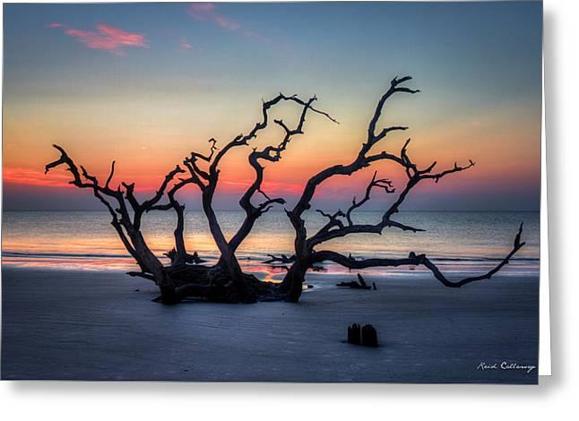 Driftwood Beach Sunrise Jekyll Island Georgia Greeting Card by Reid Callaway