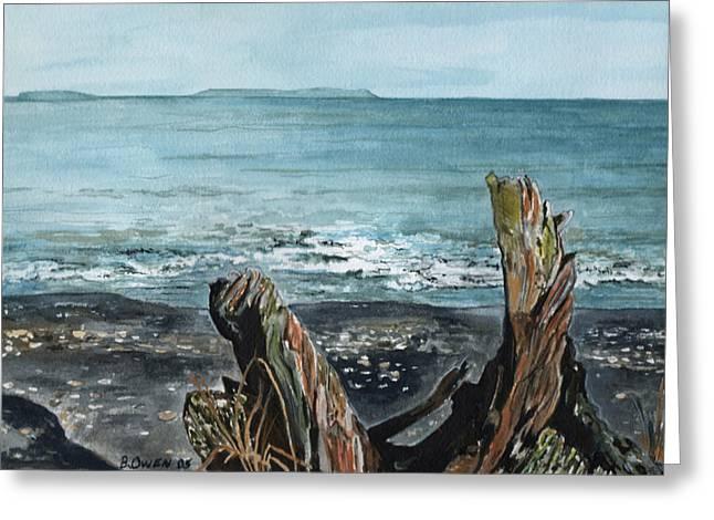Driftwood Greeting Card by Brenda Owen