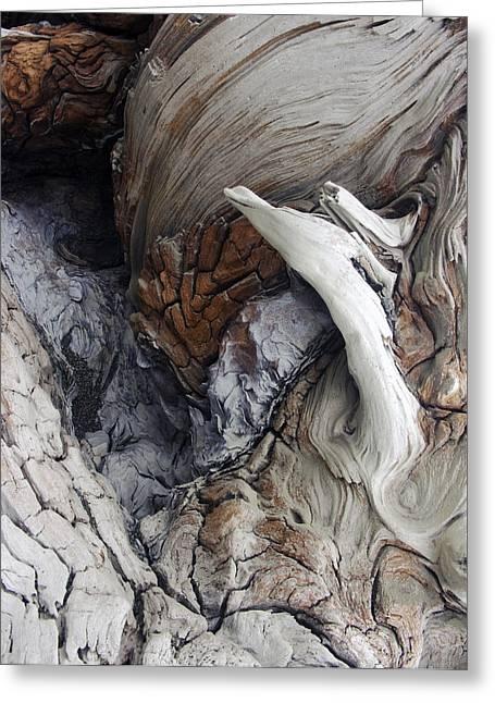 Driftwood Canyon Vii Greeting Card by D Kadah Tanaka
