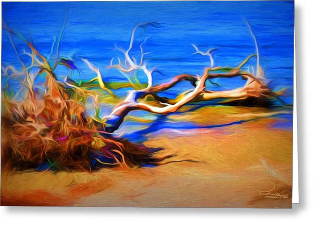 Driftwood Greeting Card by Ludwig Keck