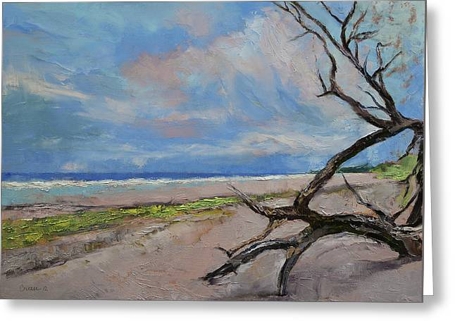 Driftwood Greeting Card by Michael Creese