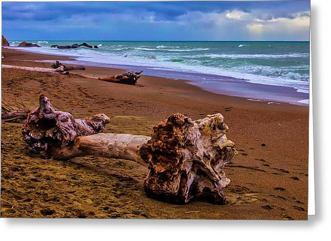 Driftwood Moonstone Beach Greeting Card by Garry Gay