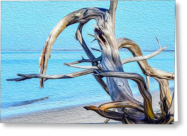 Driftwood On Jekyll Greeting Card