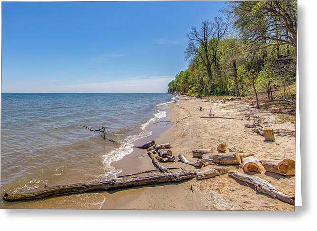 Greeting Card featuring the photograph Driftwood On The Beach by Charles Kraus