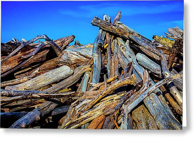 Driftwood Pile Up Greeting Card by Garry Gay