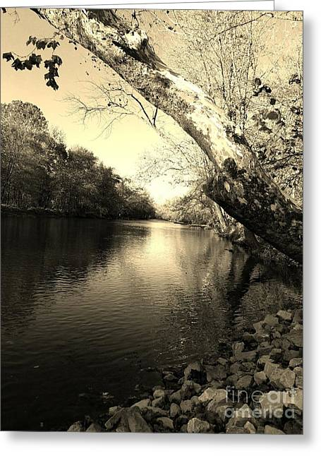 Driftwood River Southern Indiana -sepia Greeting Card