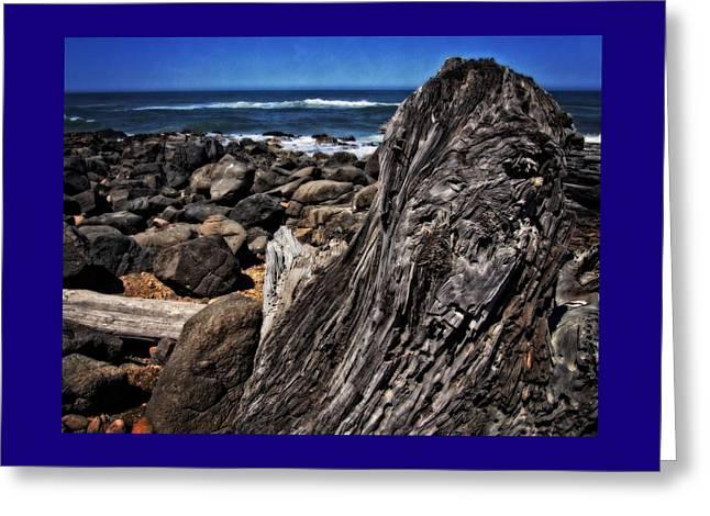 Driftwood Rocks Water Greeting Card