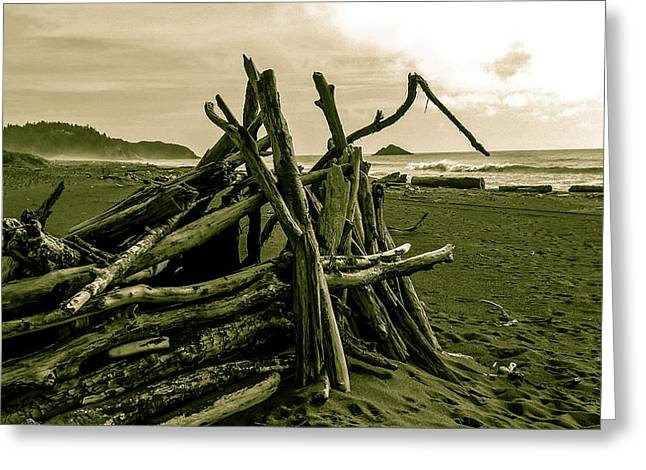 Driftwood Shelter Greeting Card