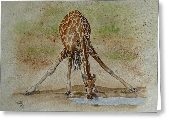 Drinking Giraffe Greeting Card