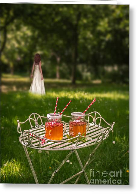 Drinks In The Park Greeting Card by Amanda Elwell