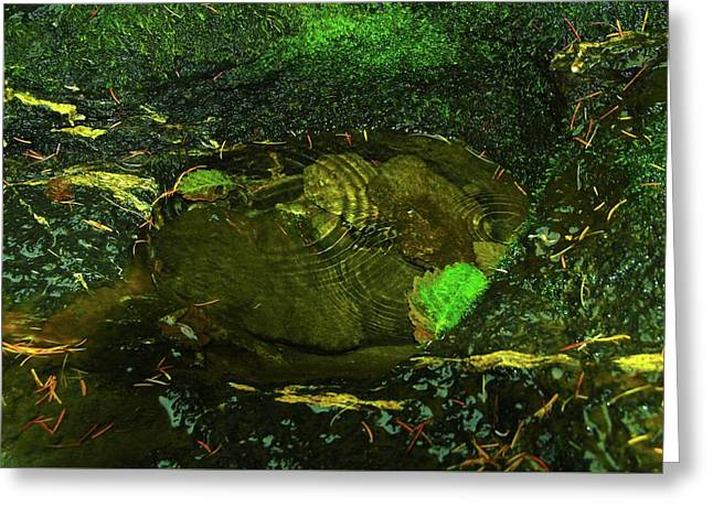 Droplets In A Clear Puddle  Greeting Card by Jeff Swan