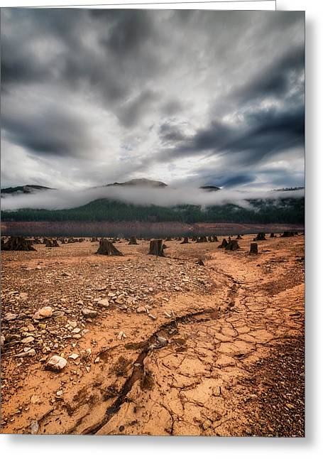 Drought Greeting Card by Ryan Manuel