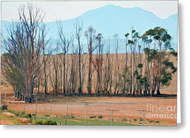 Drought-stricken South African Farmlands - 3 Of 3 Greeting Card