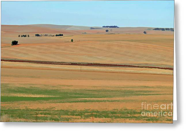 Drought-stricken South African Farmlands - 2 Of 3  Greeting Card