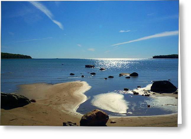 Desiree Paquette Greeting Cards - Drummond Shore 1 Greeting Card by Desiree Paquette
