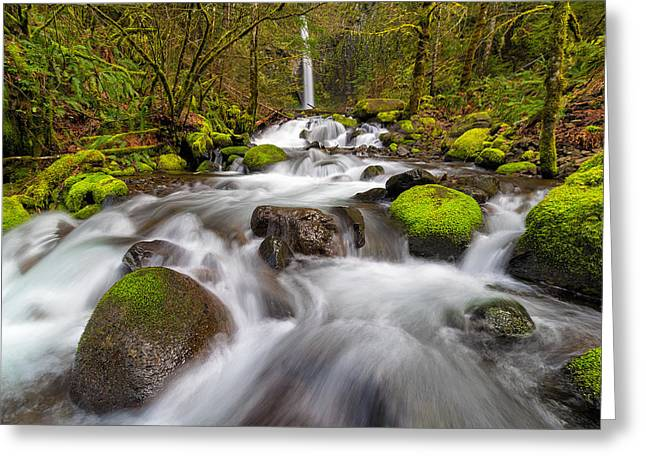 Dry Creek Falls In Spring Greeting Card by David Gn