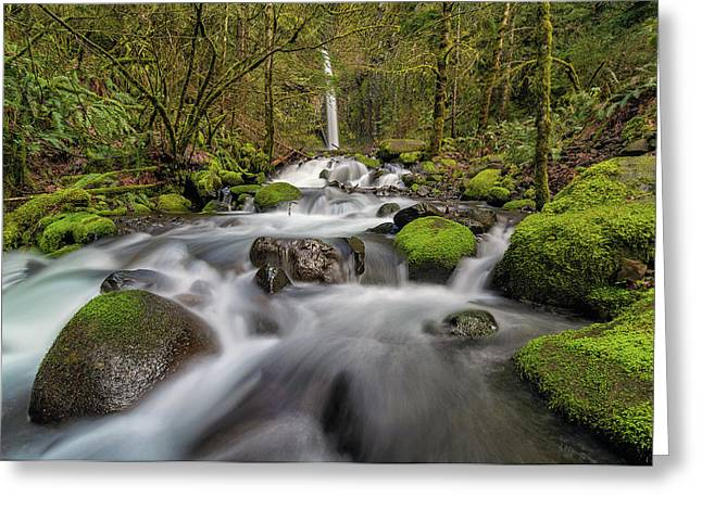 Dry Creek Falls In Springtime Greeting Card by David Gn